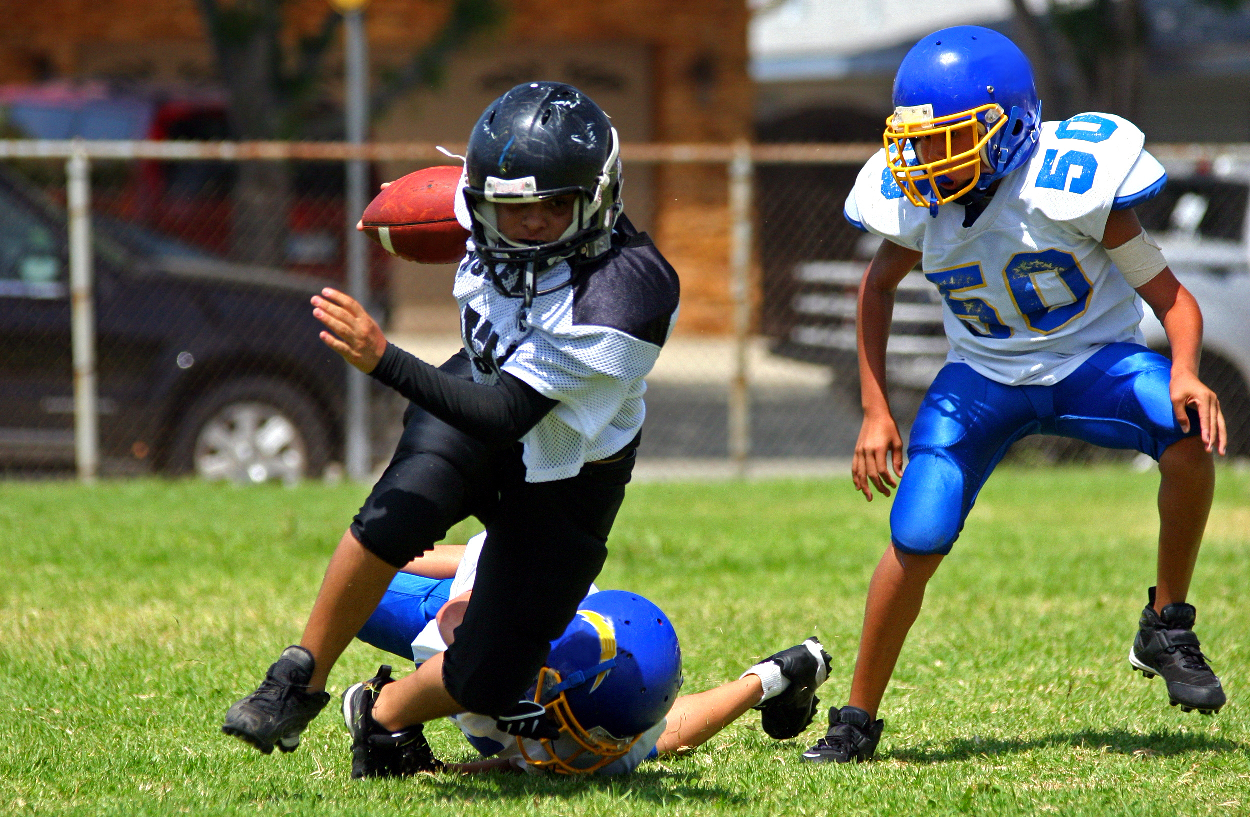the dangers of concussions in us sports essay Persuasive essay about concussions problem in many physical sports and policies have been has been a predicament to the united states of america for.