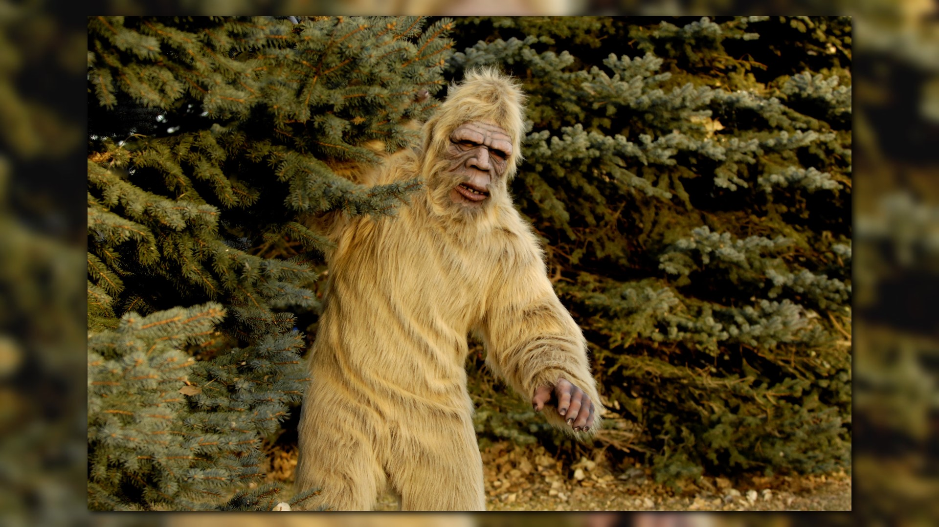 North Face Log >> Man claims to have spotted Bigfoot in North Carolina | WHAS11.com